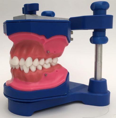 Foto FAOA - APCD regional Araraquara/ Especialização em Ortodontia, Coordenador Prof Dr. Mauricio T. Sakima (typ007)